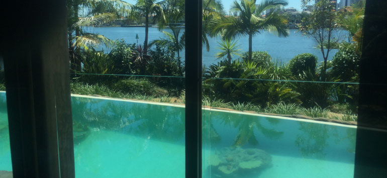 Schmiko Nicko Garden maintenance, Cararra, Broad beach, Bundall, Ashmore