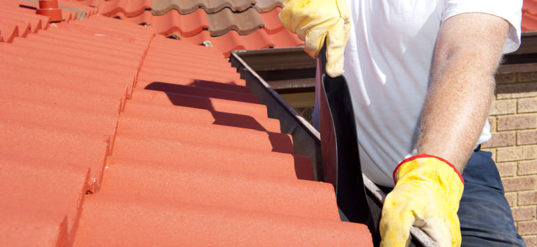 Schmiko Nicko Gutter Cleaning Tweed Coast and Gold Coast